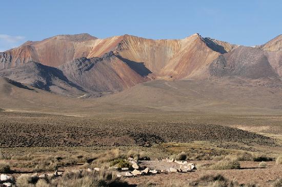 Arica, Chile: path at Parque Las Vicuñas
