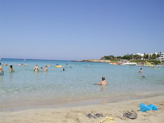 Antigoni Hotel: fig tree bay