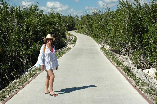 Rosewood Mayakoba: Beach is a 10 minute walk through mangrove from our villa...can catch a ride on golf carts as we