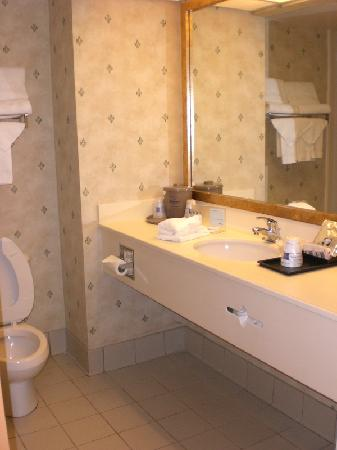 Hampton Inn Tampa-Veterans Expwy (Airport North): Bathroom View 1