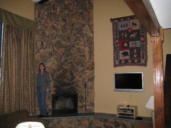Lake Placid Club Lodges: Fireplace and Flatscreen