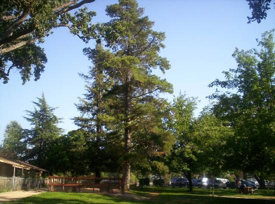 Atascadero, Kaliforniya: Lake Park