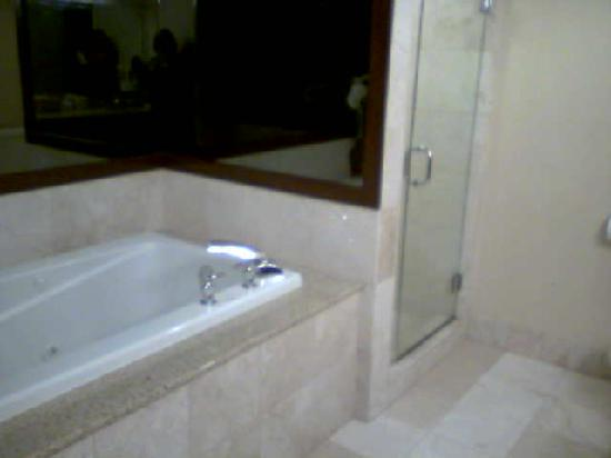 Hollywood Casino Tunica Hotel: Jet tub and Shower