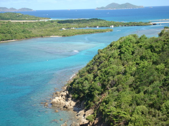 Tortola: Tortola