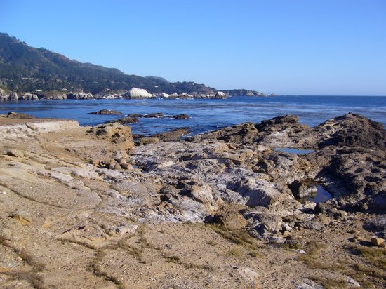 Carmel, CA: Point Lobos