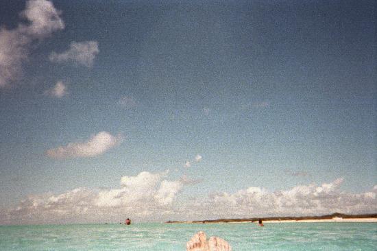 Arashi Beach: Flloating