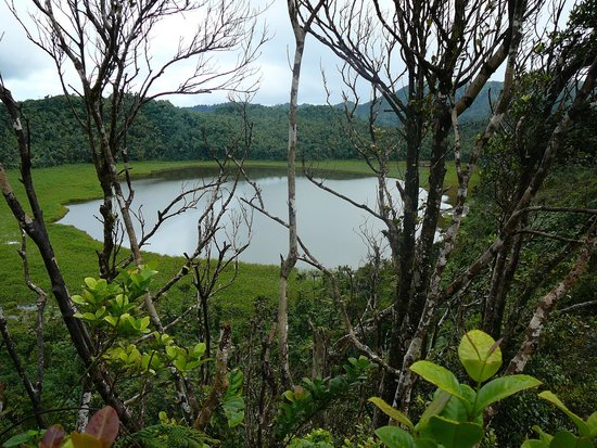 Grand Etang Nationalpark, Grenada: Lake From Above