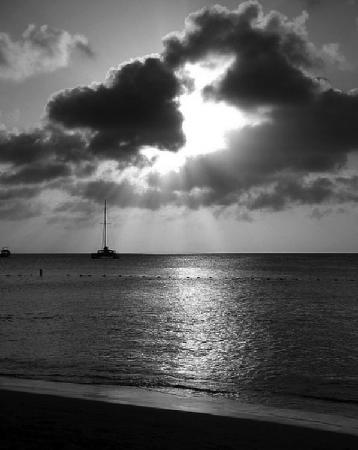 Palm/Eagle Beach, Aruba: Beautiful sunset