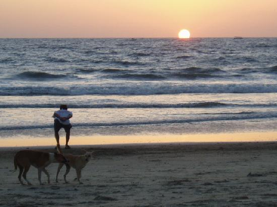 Carina Beach Resort: Benaulim beach