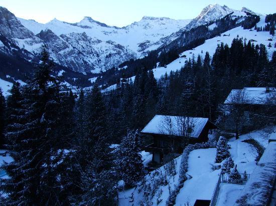 Waldhaus-Huldi : Balcony view, early morning