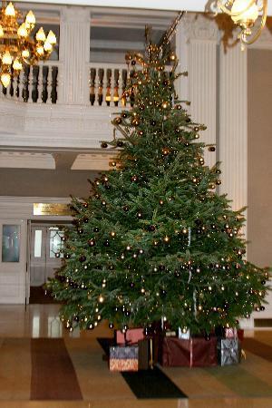 The Balmoral Hotel: Christmas at the Balmoral: the Lobby