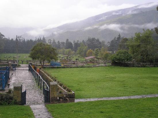 Hacienda Zuleta: Zuleta grounds