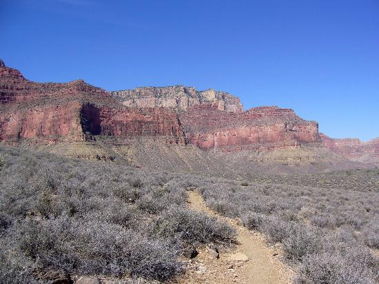 The trail ahead - Picture of Tonto Trail, Grand Canyon National Park