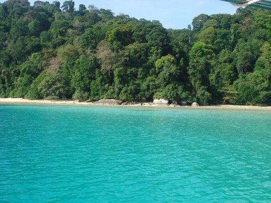 Pulau Tioman, Malaysia: Monkeybay Tioman