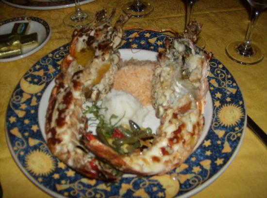 Cayo Coco, Kuba: Loster at the seafood restaurant AMAZING!!!
