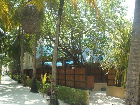 Banyan Tree Vabbinfaru : new accommadation