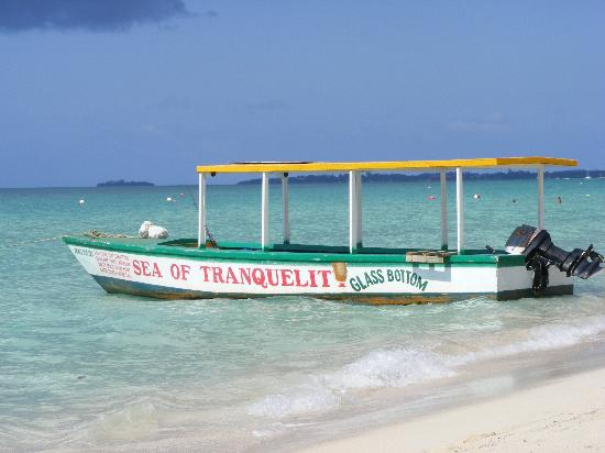 Shields Negril Villas: Charlies glass bottom boat !