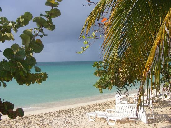 Shields Negril Villas: View from resort !!