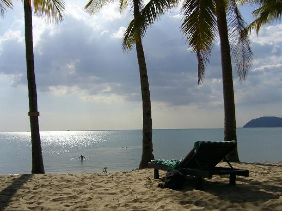 Sunset Beach Resort : Nice beach, soft sand, breeze and coconut trees