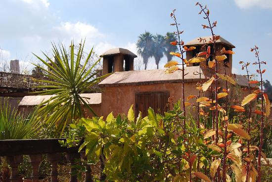 Dar Rbaa Laroub: terrasse 2