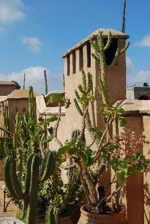 Dar Rbaa Laroub: terrasse 3