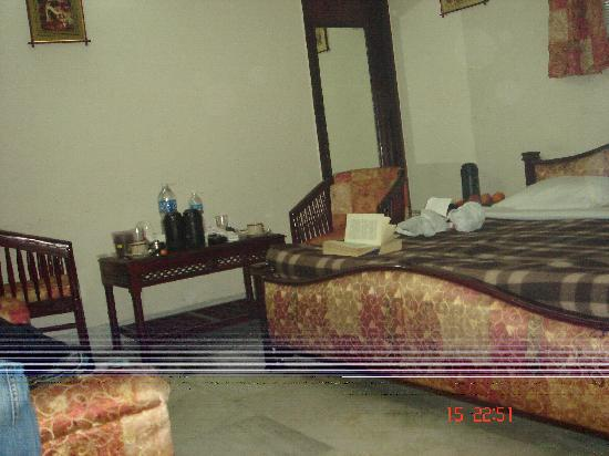 Hotel Mehar Castle: Room 208