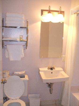 Port Dover, Καναδάς: room#15 washroom