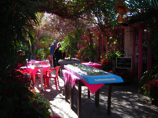 Mulege, Messico: Restaurant patio