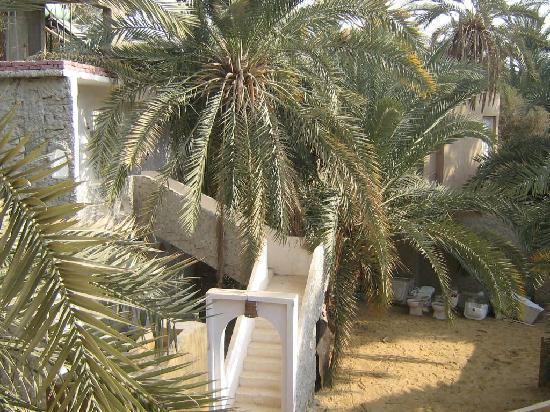 Siwa Paradise: Hotel Garden