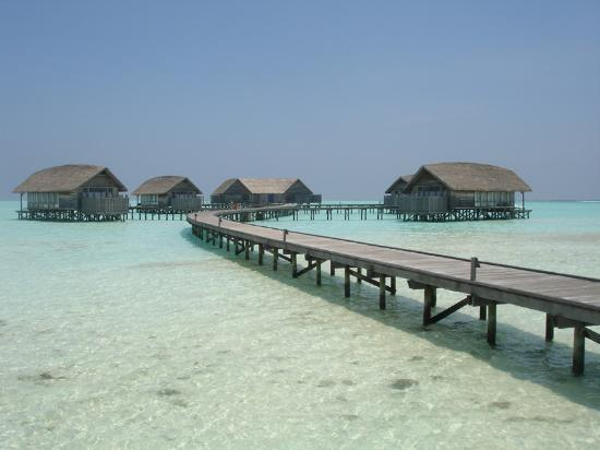 COMO Cocoa Island: our home for 7 nights
