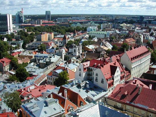 تالين, إستونيا: Tallinn from above
