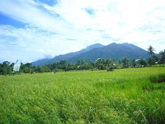 Sematan Village: Gunung Gading as the backdrop of this peaceful village
