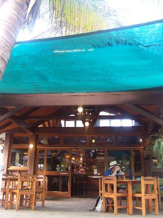 Fraser Island Retreat: Satinay bar