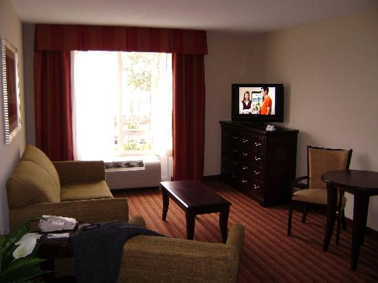 Holiday Inn Hotel & Suites Orange Park: living room area of my suite