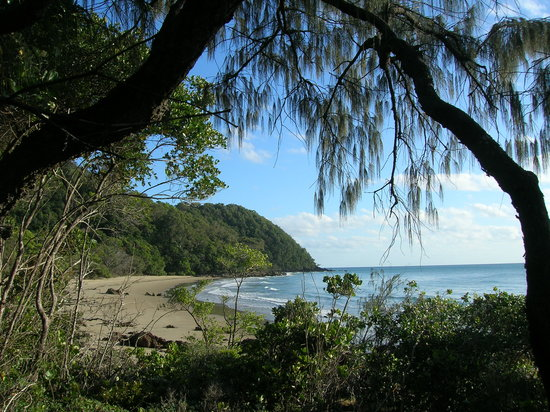 Wait a While in the Daintree: One of Four Beaches - all superb