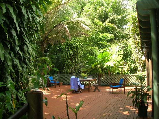 Wait a While in the Daintree : The Breakfast Balcony