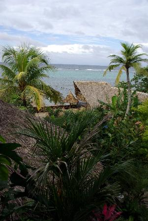 Tranquilseas Eco Lodge and Dive Center: View from our cabanna
