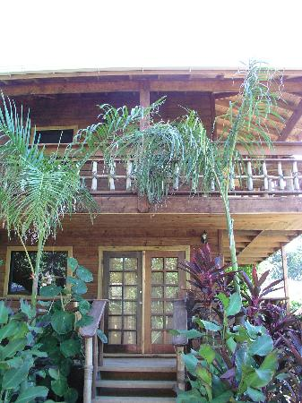 Tranquilseas Eco Lodge and Dive Center: Top Cabana was lovely