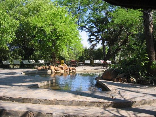 Maramba River Lodge: Pool area