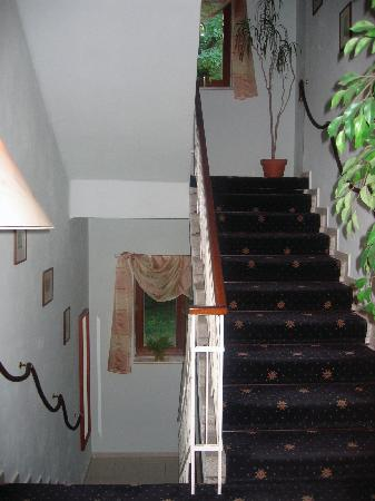 Hotel Villa Conti: Inside