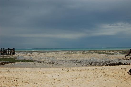 Protea Hotel by Marriott Zanzibar Mbweni Ruins: Strand bei Ebbe