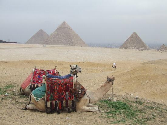 Egypt: Giza Pyramids