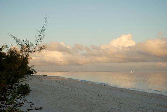 Quirimbas Archipelago, Mocambique: Vamizi Island