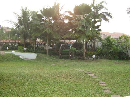 Villa Victoria Guesthouse : The backyard
