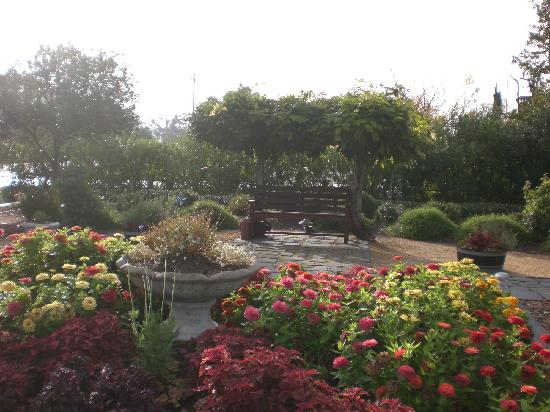 Oleander House B&B: Garden