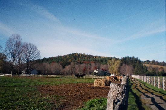 Marsh - Billings - Rockefeller National Historical Park: Farm