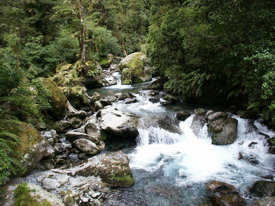 Fiordland National Park (Te Wahipounamu): This could be a postcard