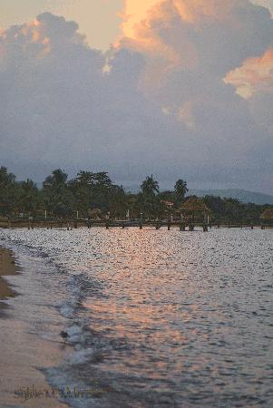 Hamanasi Adventure and Dive Resort: after the storm