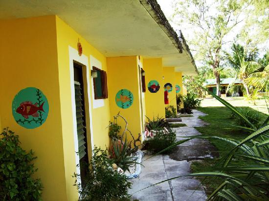 Greenwood Beach Resort : Freshly painted rooms