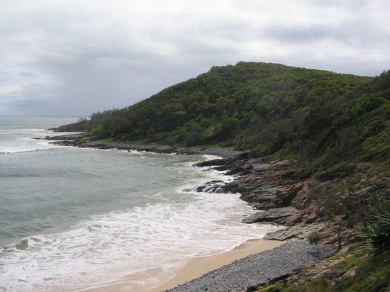 Noosa, Australië: National Park walking distance from Hastings